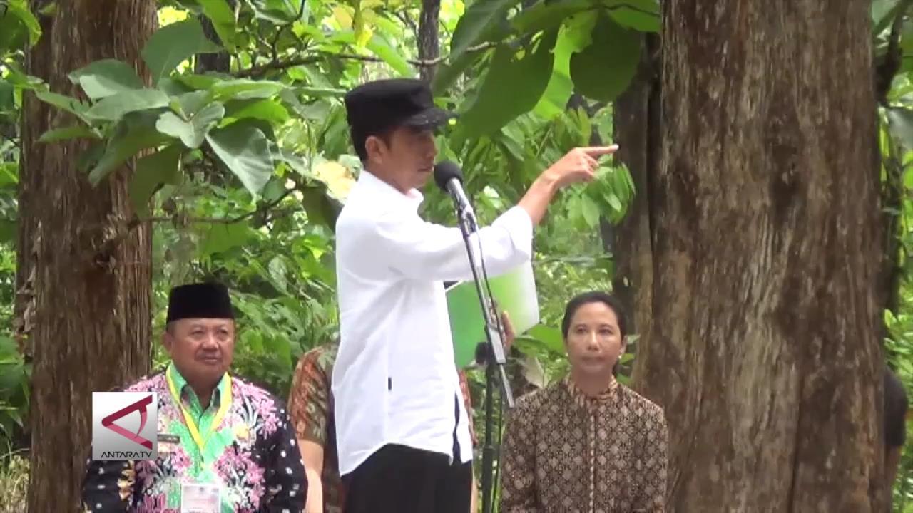 Presiden Bagikan Hak Garap Hutan di Madiun