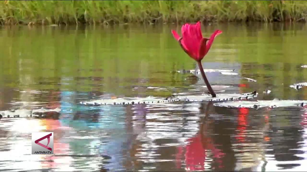 Desa Wisata Era Kerajaan Mataram