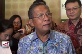 Indonesia  berencana jual sawit ke ke negara berkembang
