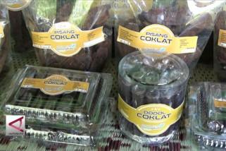 Kaum Ibu Gunungkidul penyelamat biji kakao