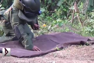 Warga Aceh Timur Temukan Granat Sisa Konflik