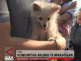 Komunitas Anjing Di Makassar