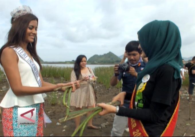 Puteri Pariwisata Tanam Mangrove Di Jember