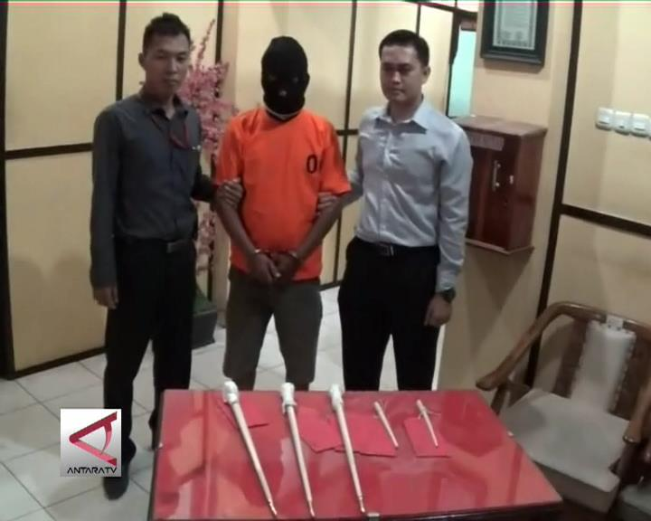Polda Bengkulu Tangkap Penjual Gading Gajah