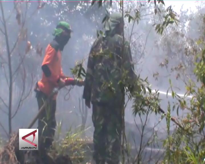 Pemda Kalsel Bentuk Tim Atasi Kebakaran Lahan