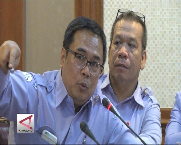 KKP Berupaya Revitalisasi Mangrov di Pantura