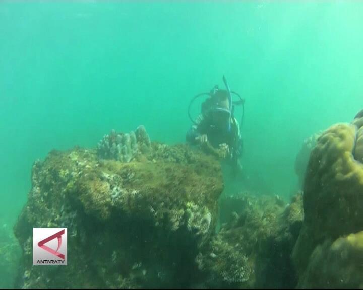 20 Juta Hektar Konservasi Laut di 2020