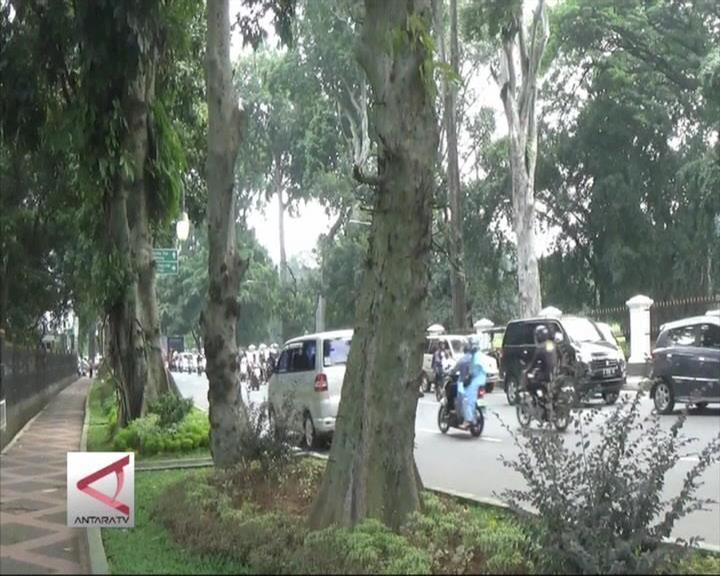 Pemkot Bogor Rencanakan KTP Pohon