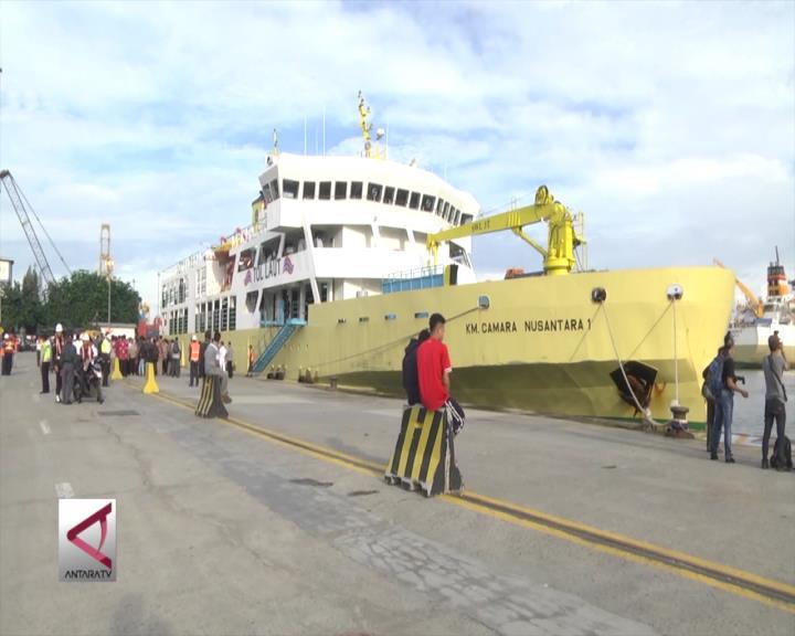 Kapal Ternak Turunkan 500 Ekor Sapi di Jakarta