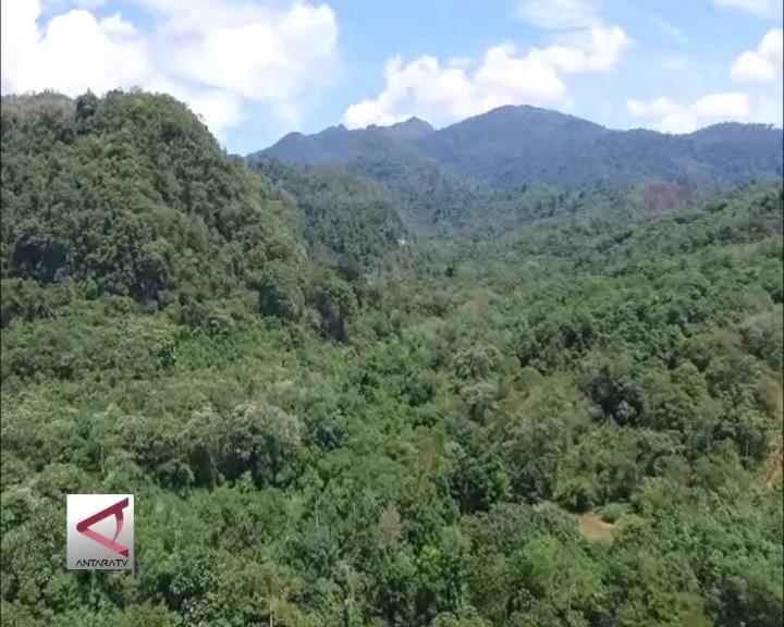 Pegunungan Meratus Diperjuangkan Jadi TN