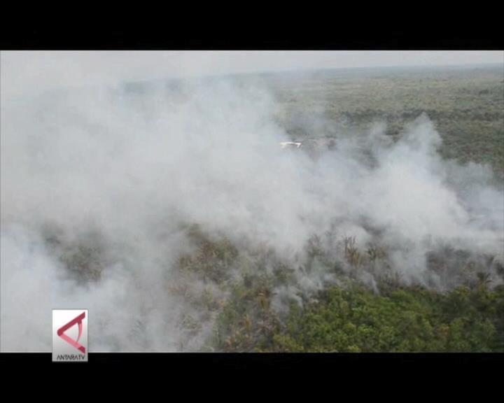 Water Bombing Efektif Padamkan Karlahut Riau