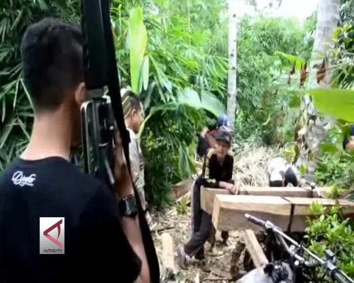 Razia Kayu Ilegal di Pesawaran, Lampung