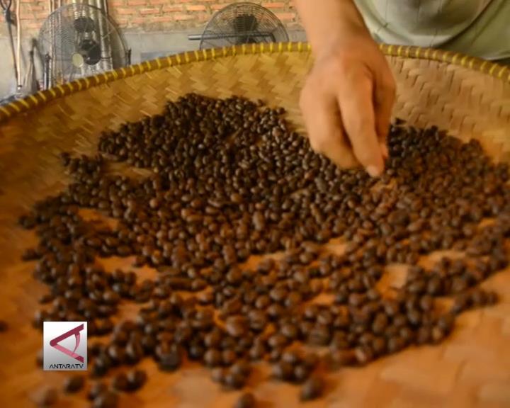 Cari Pasar Ekspor Baru Kopi Lampung