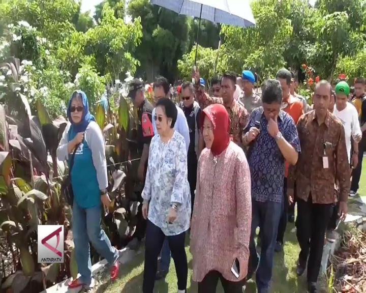 Risma Antar Megawati Kelilingi Taman Harmoni