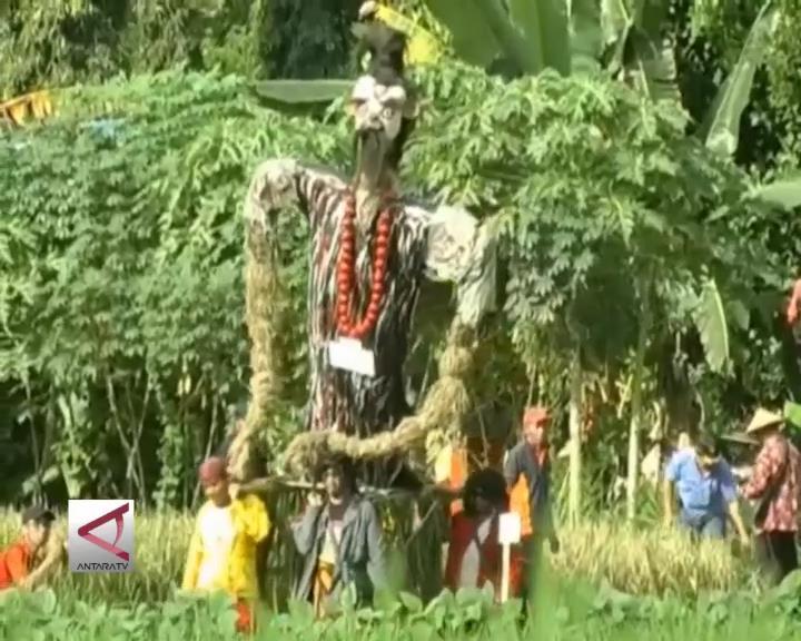 Festival Memedi Sawah Bangkitkan Budaya Petani