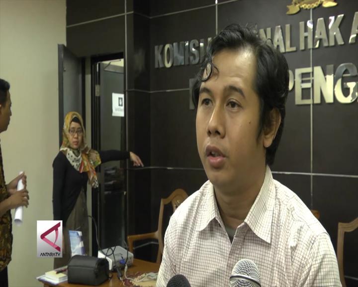 Komnas HAM Kawal Kasus 24 Orang Tewas di Lubang Tambang