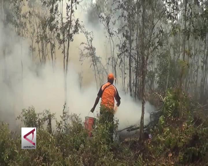 Kebakaran Hutan dan Lahan Menurun