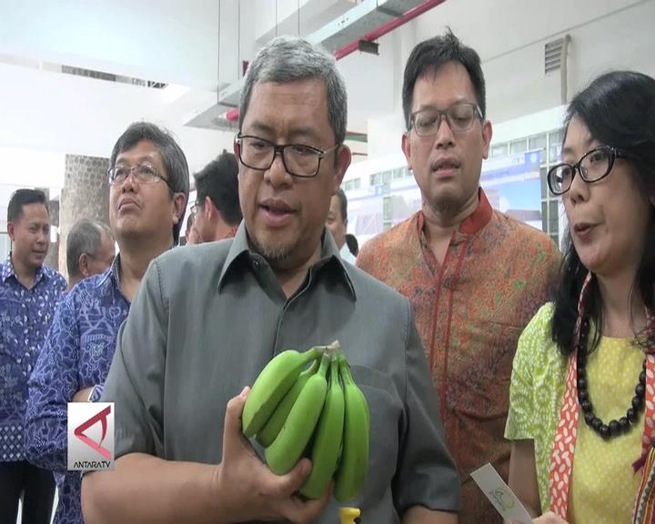 Transfer Dau Ditunda, Gaji PNS Tetap Aman