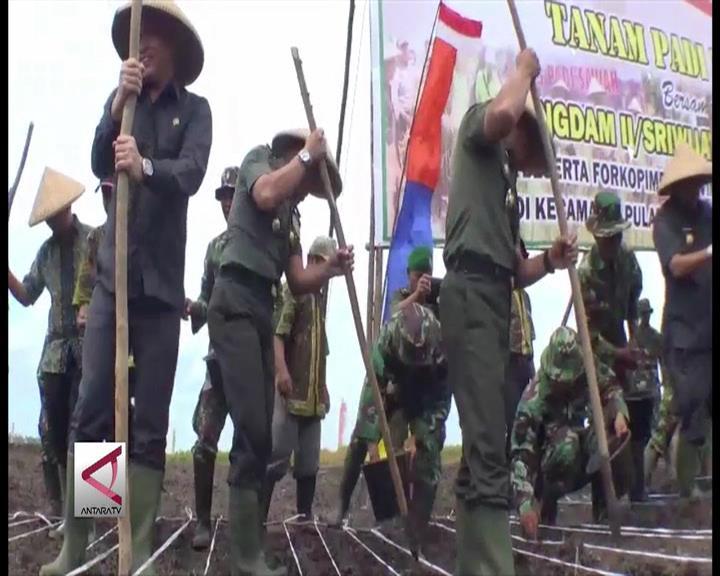 TNI Bantu Cetak Ribuan Hektar Sawah di Babel