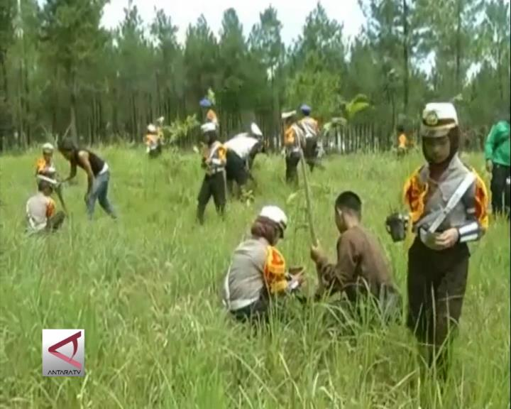 Wisata Konservasi Merapi Ratusan Pocil dan PKS