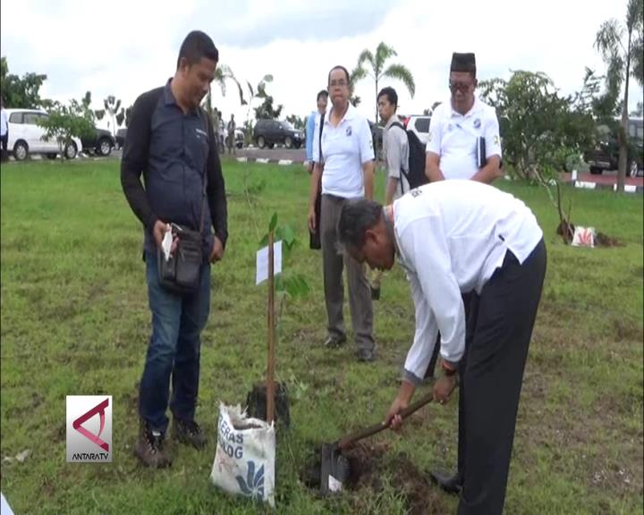 Kementerian PU Tanam 10 Ribu Pohon di Kalsel