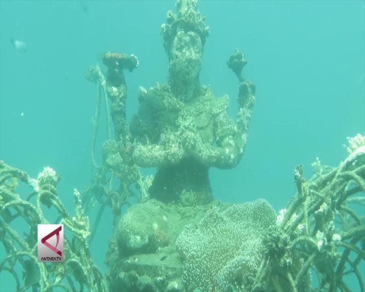 Berfoto di Keindahan Bawah Laut Pemuteran Bali