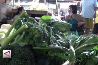 Harga Sayuran di Bantul Melejit Akibat Banjir