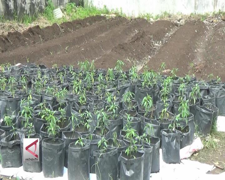 Memanfaatkan Sampah Jadi Ladang Usaha