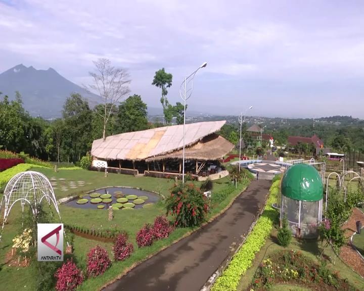 Liburan Nuansa Alam di Camp Hulu Cai