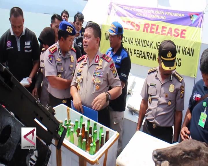 Perusak Ekosistem Teluk Lampung Ditangkap