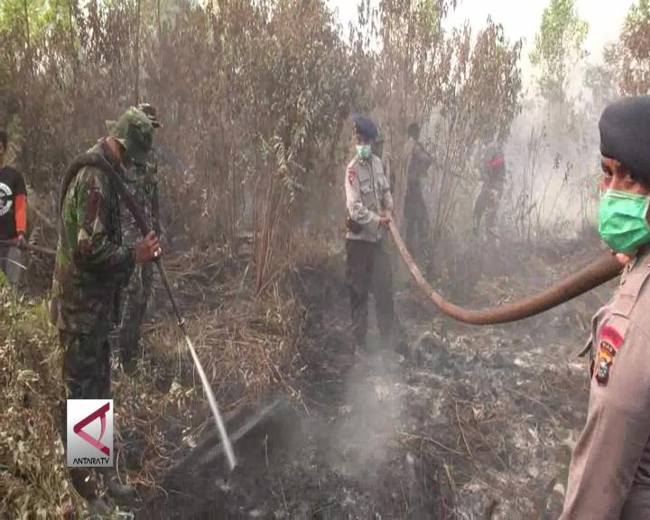 Riau Resmi Berstatus Siaga Darurat Karhutla