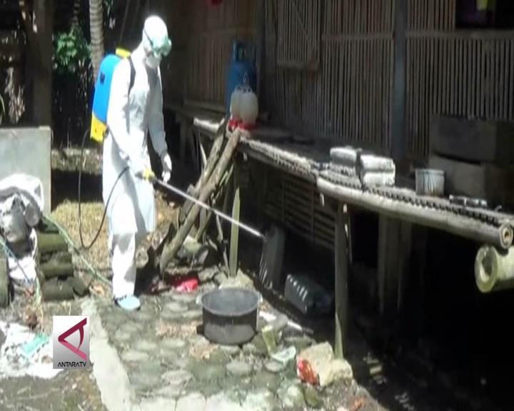 Masyarakat Diimbau Waspada Flu Burung