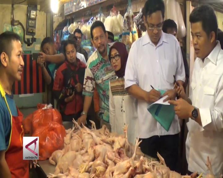 KPPU Sidak Harga Ayam Potong di Pasar Bogor
