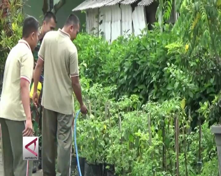 TNI AD Bertani di Lahan Kosong