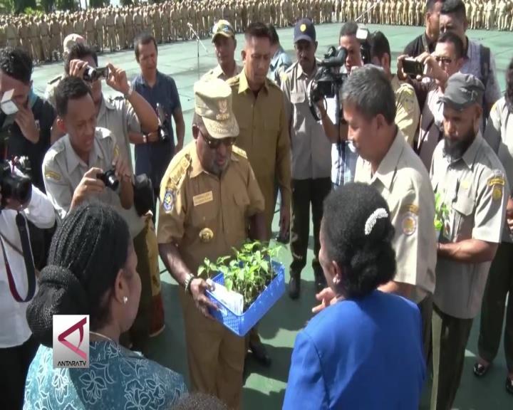 Gubernur Papua Bagi Bibit Cabai Bagi ASN