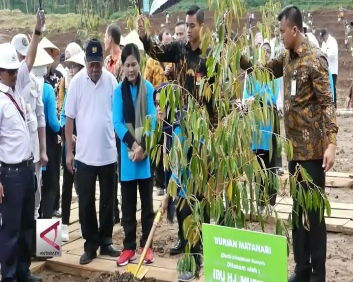 Ibu Negara Tanam Pohon Durian di Bendungan Gondang