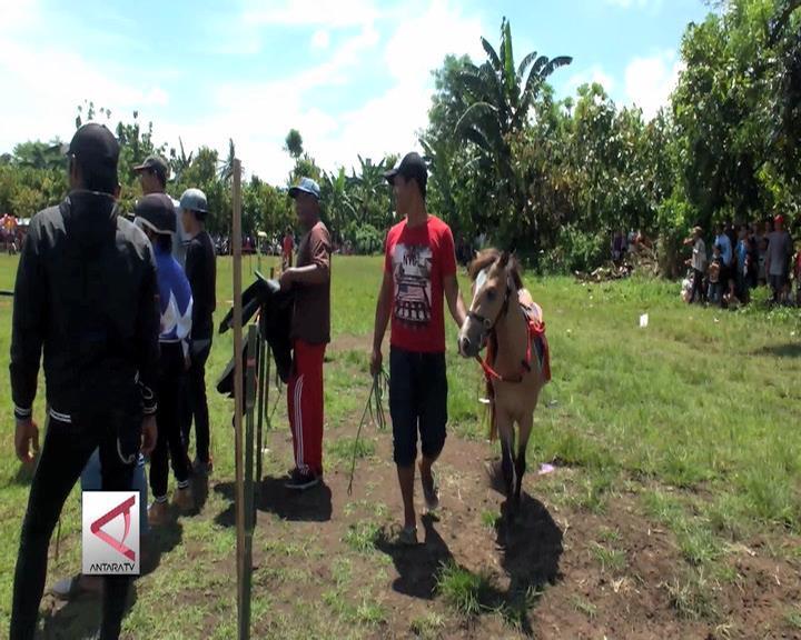 Pacuan Kuda Sebagai Ajang Promosi Desa