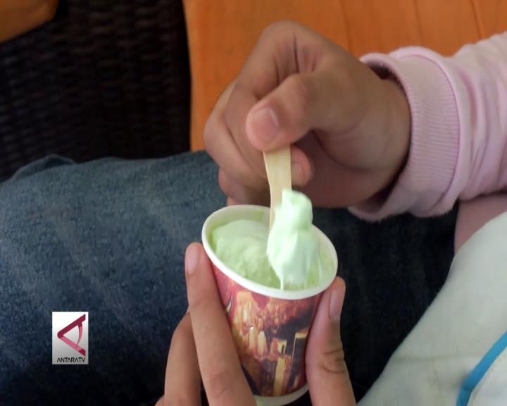 Es Krim Sayur yang Lezat dan Sehat