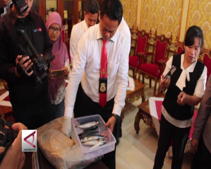 Polda Lampung Gagalkan Peredaran 5 Ton Ikan  Berformalin