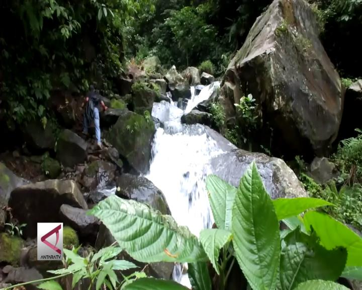 Perhutani Jember Kembangkan 18 Obyek Wisata Alam