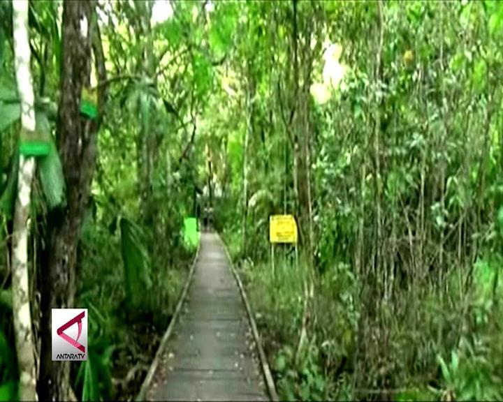 Berwisata Gratis di Hutan Kaya Flora & Fauna