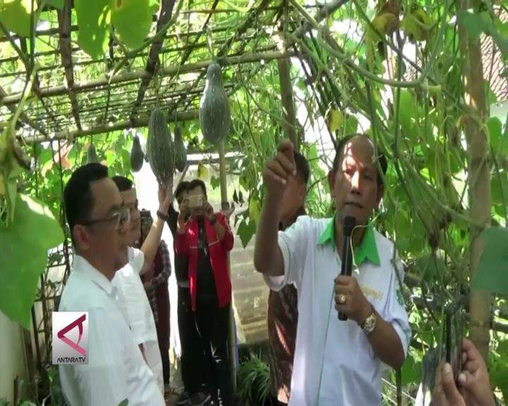 Kampung di Malang yang Jadi Percontohan Kementerian BUMN