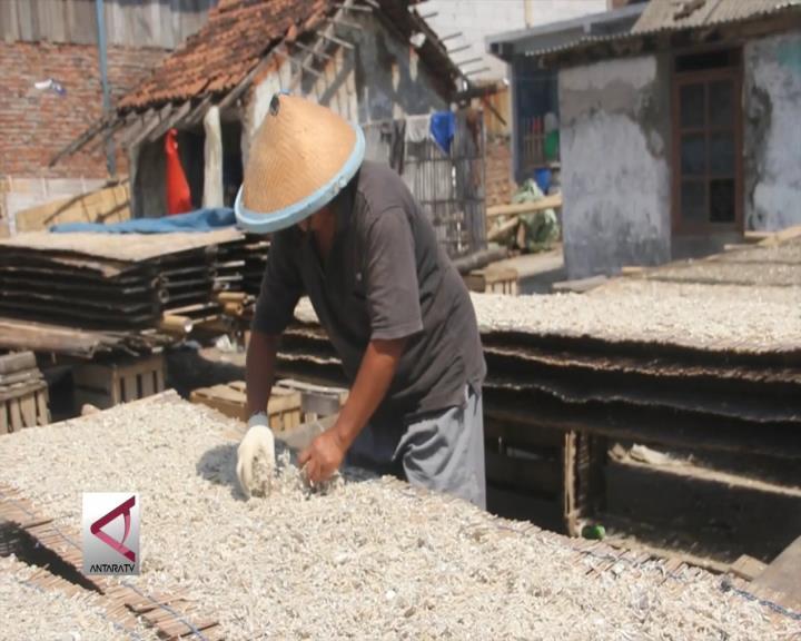 Meningkat Produksi Pengeringan Ikan Asin