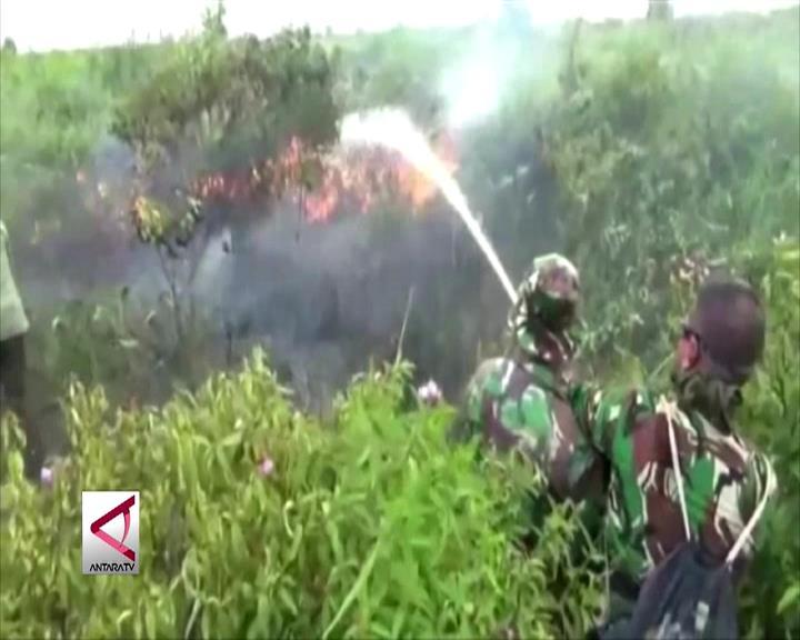 Ada 3 Kabupaten Penyebar Titik Api di Kalteng