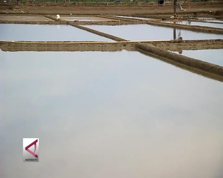 BPPT Kembangkan Teknologi Produksi Garam Nasional
