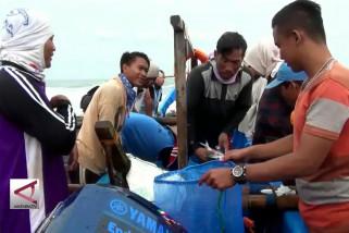 Panen Melimpah, Nelayan Raup Untung Besar