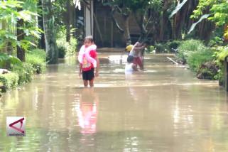 Banjir rendam 8 desa di Jember