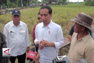 Presiden tinjau proyek padat karya di Tabanan