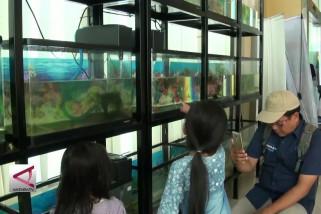 KKP Gelar Makan Ikan Patin Besar Bersama Anak-Anak
