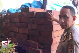 Polisi Sita ratusan batang kayu ilegal